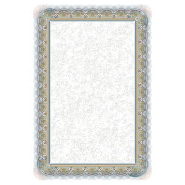 Dipl.popierius 170g/25l SREBRO 210117