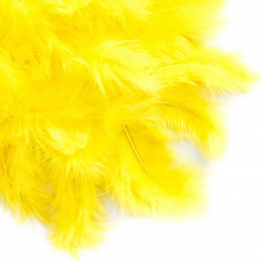 Plunksnos 5-12cm, 5g, geltona sp.