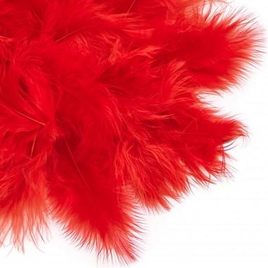 Plunksnos 5-12cm 5g. raudona sp.