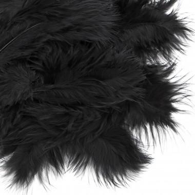 Plunksnos 5-12cm 5g. juoda sp.
