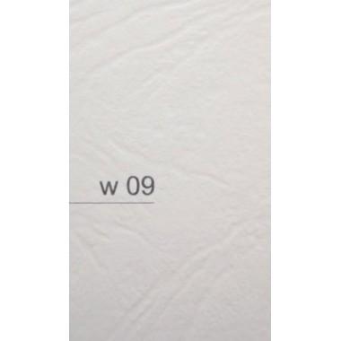 Popierius vizitin.kortelėms A4-20 W09