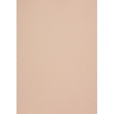 Popier.A4 CM 120g. Nude 408158