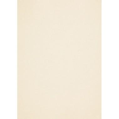 Popier.A4 CM 120g. Europa Ivory 408159