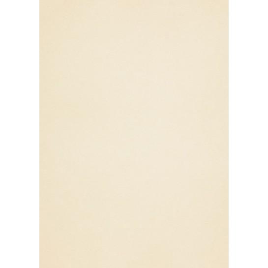Popier.A4 CM 120g.White Gold 408160
