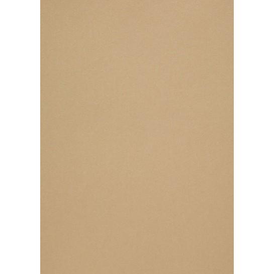 Popier.A4 CM 120g.Gold Leaf 408161