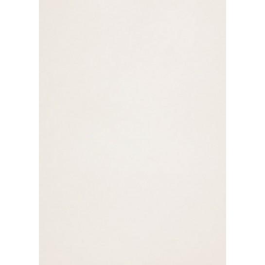 Popier.A4 CM 120g.Cryogen White 408165