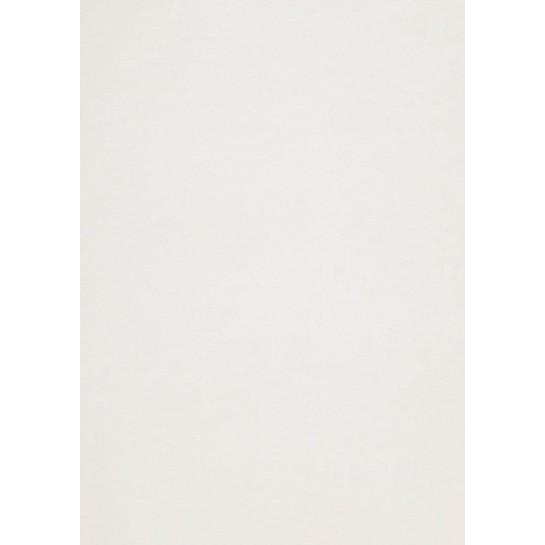 Popier.A4 CM 120g.IceSilver 408166