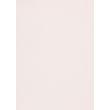 Popier.A4 CM 120g. Pink Quartz 408311