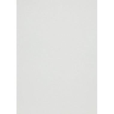 Popier.A4 CM 120g. White Silver 408312