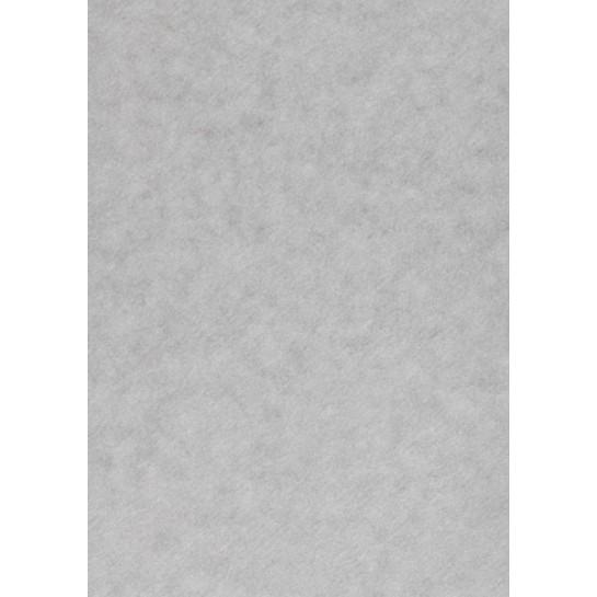 Popier.A4 CA120g. Silver 408316